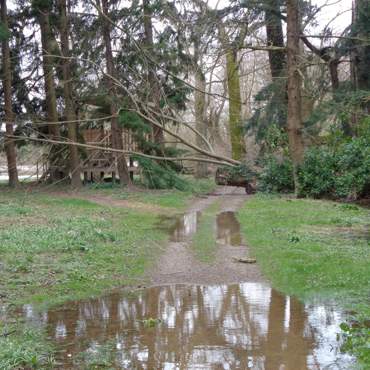 The Weir Garden flooding and trees that have fallen down in the storms