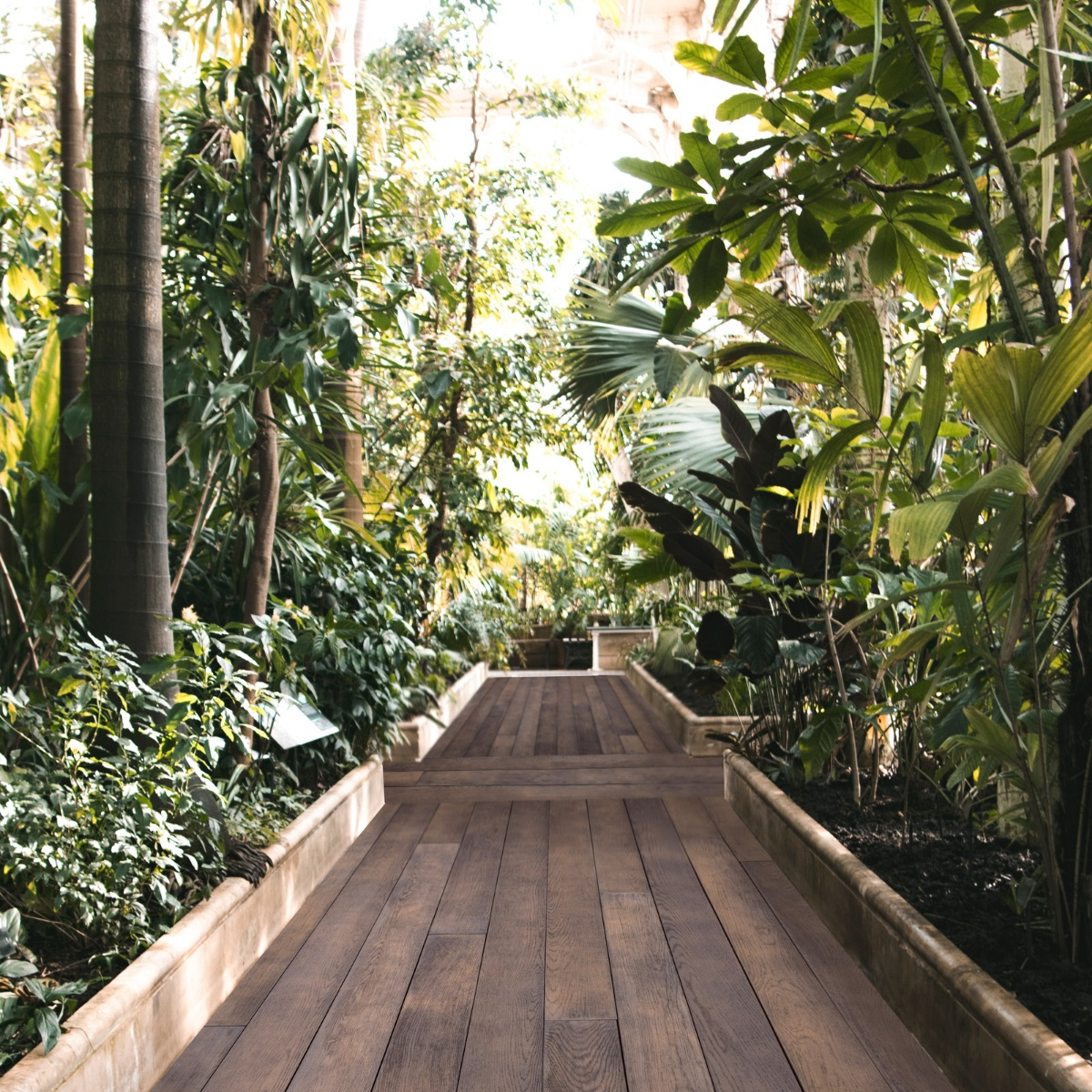 A boardwalk in a botanical greenhouse made from Millboard polyresin decking planks